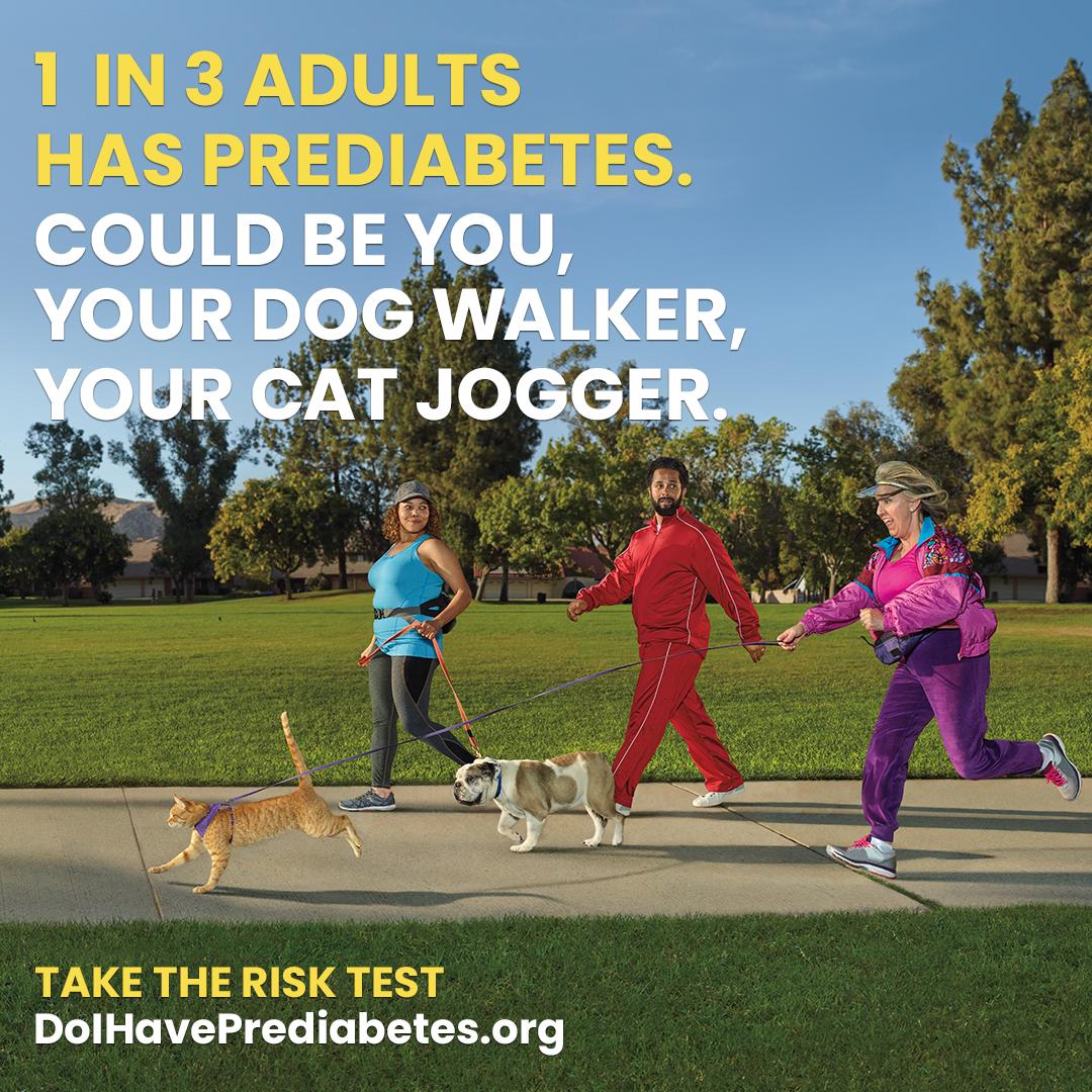 DBC_cat_jogger_1080x1080_Eng