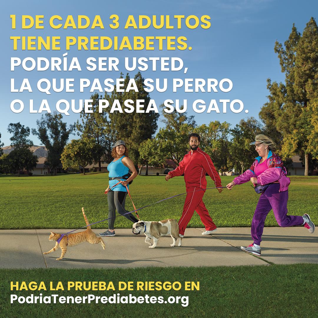DBC_cat_jogger_1080x1080_Spa